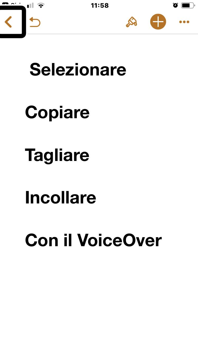 immagine di un iPhone con la scritta: seleziona, copia, taglia e incolla