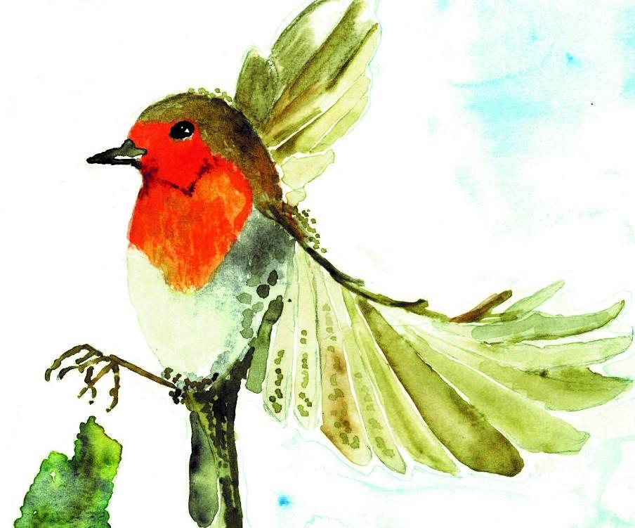 Nell'immagine il Logo Gruppo Culturale Amici del Pettirosso
