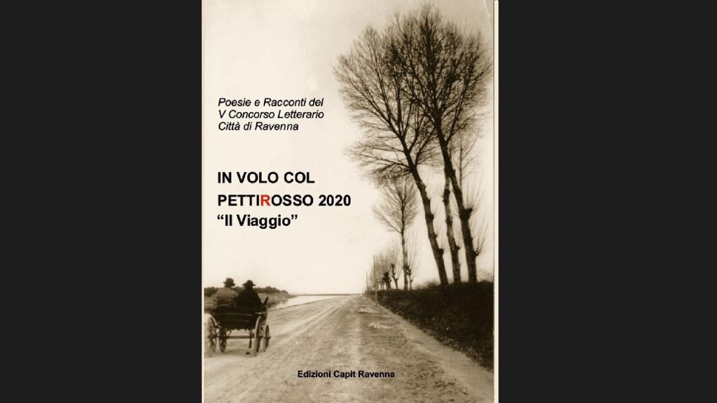 nell'immagine la copertina Antologia Concorso 2020 - Testo Rilevato: Poesie e Racconti del V Concorso Letterario Città di Ravenna  IN VOLO COL  PETTIROSSO 2020